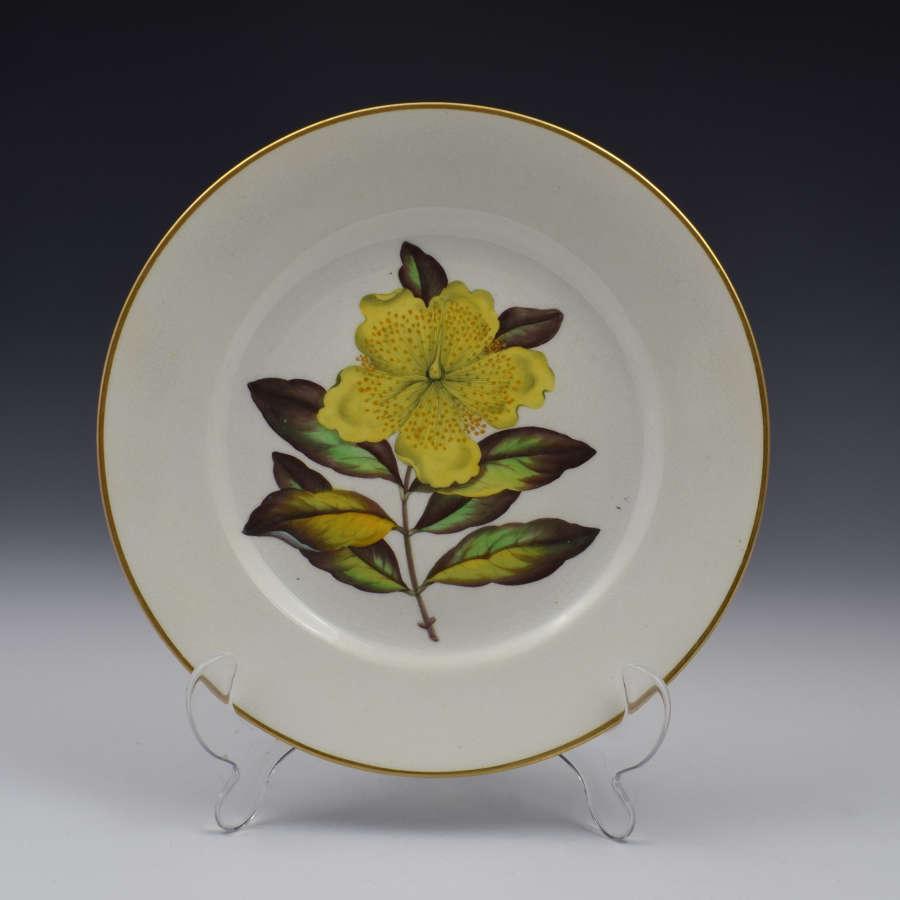 Derby Porcelain Botanical Dessert Plate c.1806 Curtis St John's Wort
