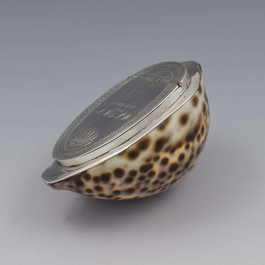 Georgian Silver Mounted Cowrie Shell Snuff Box