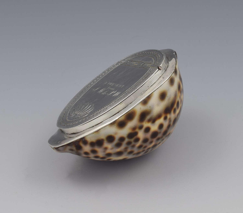 Georgian Silver Mounted Cowrie Shell Snuff Box