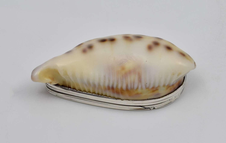 Georgian Silver Mounted Cowrie Shell Snuff Box C.1810