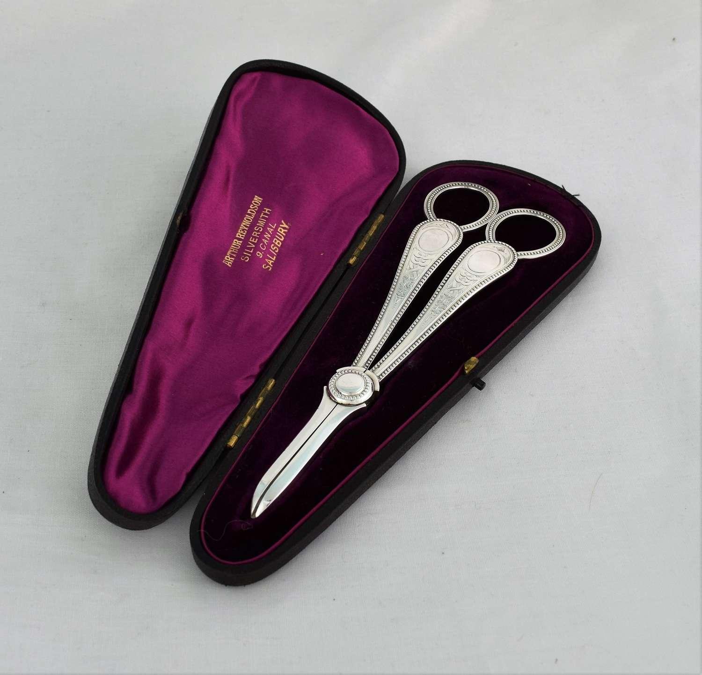 Pretty Cased Victorian Silver Grape Shears Scissors Martin, Hall & Co.