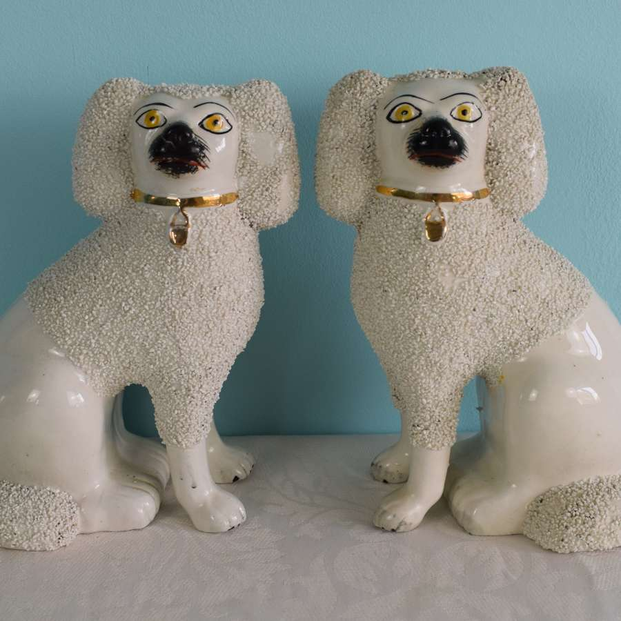 Pair Victorian Staffordshire Pottery Poodles Fireside Dogs