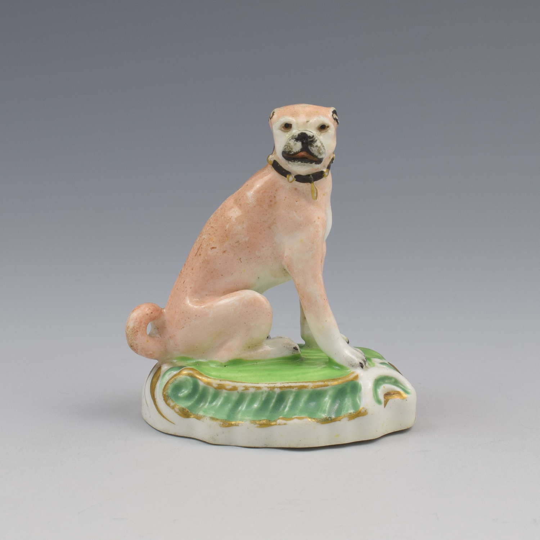 Staffordshire Porcelain Figure Of A Seated Pug Dog c.1830